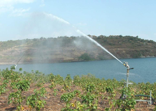 Harambee gwassi kenya progetto irrigazione nella piana for Progetto irrigazione